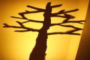 Stand για εκθέσεις - Δέντρο φωτιστικό - Comme Ca